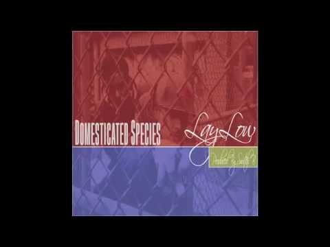 LAY LOW - Domesticated Species (Full Album) prod. Switch B