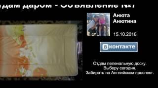 Отдам даром Санкт-Петербург - Видео объявления России<