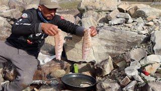 Pesca Y Cocina De Bagres 2020