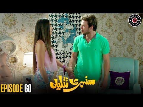 Sunehri Titliyan   Episode 60   Turkish Drama   Hande Ercel   Dramas Central