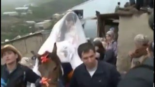 Супер Невеста на Кобыле/Super bride on mare