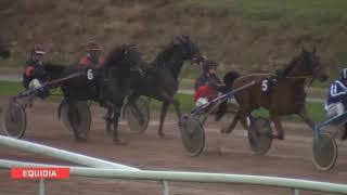 Vidéo de la course PMU GRAND PRIX DES 4 ANS (GR B)