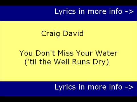 Karaoke | Craig David - You Don't Miss Your Water