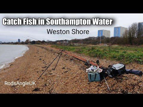 Catch Fish In Southampton Water: WESTON SHORE