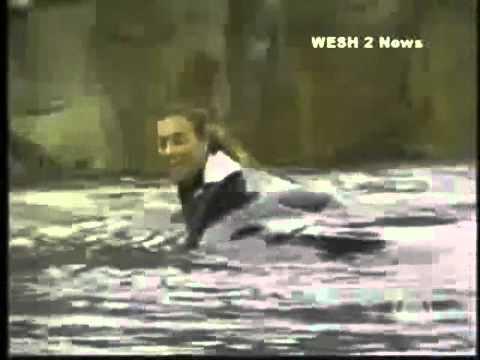Tilikum, Killer Whale: Deaths & Attack Video Controversy