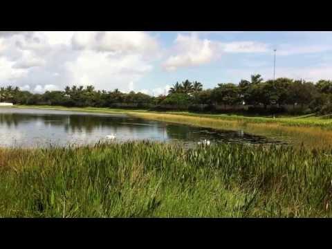 BBTS Black Water Diving, Intake Irrigation Screen Maintenance Part 3