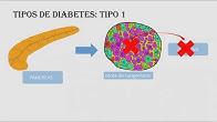 Lección 2.1 ¿Qué significa la diabetes?