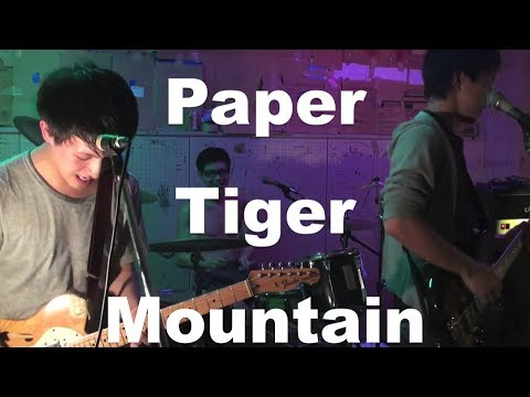 Paper Tiger Mountain - I say Fuck when you get money