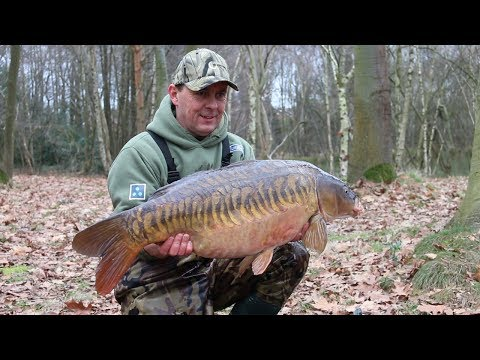 Nigel Sharp's Boosted Hookbaits