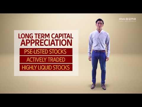 Allianz PNB Life - Peso Dynasty Equity Fund