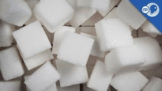 Refined Sugar: Where did it come from? | Stuff of Genius