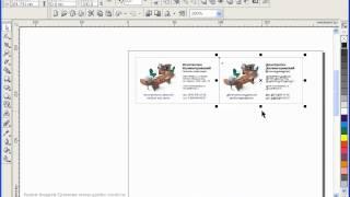 Как разместить визитки на листе формата А4