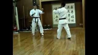 Sensei Nakamatsu Training 2005