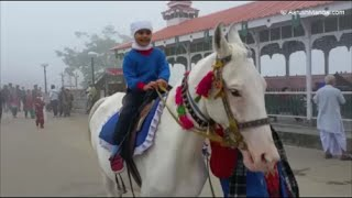 Aarush Enjoying Riding A White Horse - Shimla Mall Road - 5 Aug 2015