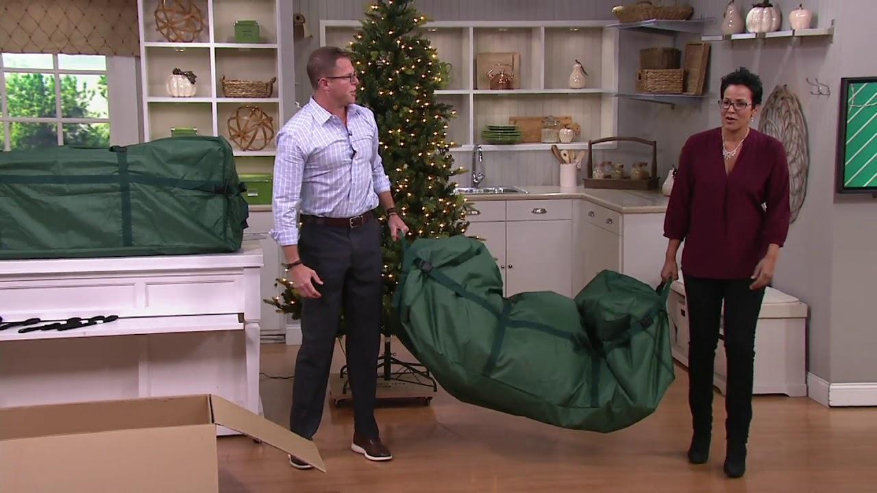 Gentil Heavy Duty Christmas Tree Storage Bag On QVC