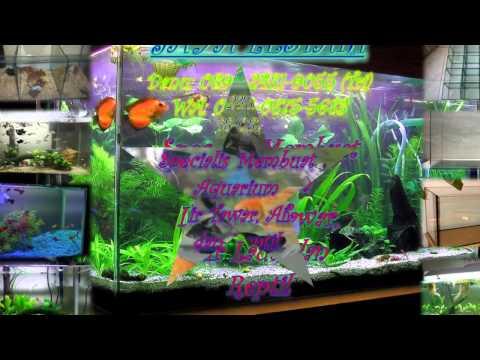 0896-2481-9055-(tri),-jual-aquarium-di-bekasi,-jual-aquarium-di-bekasi-kota