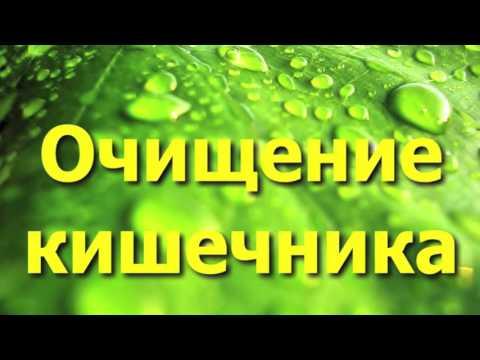 Семена льна: польза и вред, лечебные свойства и