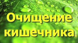 Очищение организма при помощи семени льна - профилактика и лечение многих заболеваний.(Семя льна - уникальный продукт, который обладает ценными пищевыми и лечебными свойствами, а в сочетании..., 2015-10-11T14:32:39.000Z)