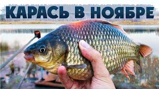 Здорово ОТЛОВИЛИСЬ по КАРАСЮ в НОЯБРЕ! Рыбалка на ФЛЭТ ФИДЕР по холодной воде.