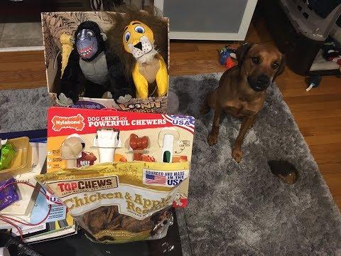 Dog Supplies Haul - Costco Treats & Toys (April 2018)
