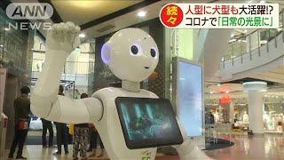 人型に犬型も!コロナでロボットが「日常の光景」に(20/05/28)