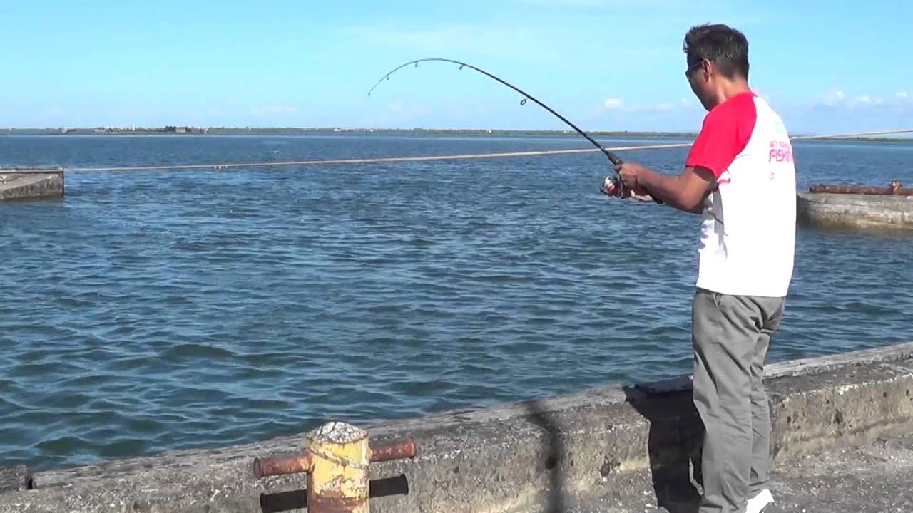 Danggit fishing youtube for Youtube fishing video