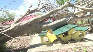 Hurricane Maria Hurricane Irma