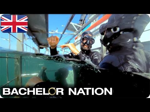 Shark Dive Date Almost Ends In Disaster! 🦈   The Bachelor UK
