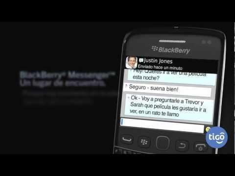 BlackBerry® Bold™ 9790