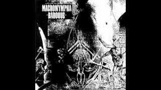 Macronympha - Shatterbrain Jazz Anomaly