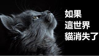 今次跟大家分享一本書書名叫如果這世界貓消失了· credits https://www.p...