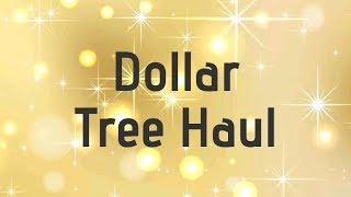 Dollar Tree Haul 11/7/19