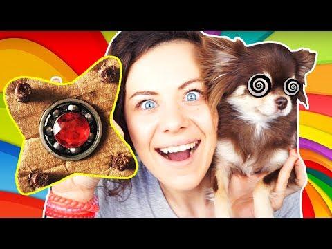 видео: Сделала СОБАЧИЙ СПИННЕР ! Собаки крутят ФИДЖЕТ СПИННЕР diy magic family