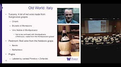 Wine 101 with UW Professor Michael Wagner