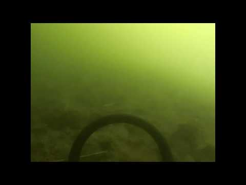 Prospectors underwater detecting Hvalstrand Asker