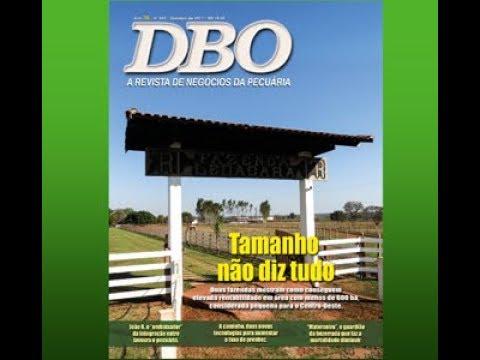 DBO de outubro constata que tamanho não é documento na pecuária de corte