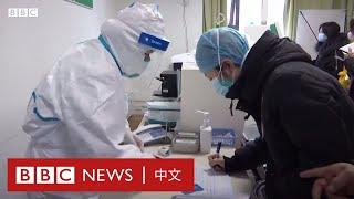 武漢肺炎:中國有關當局建議市民不要前往武漢 - BBC News 中文