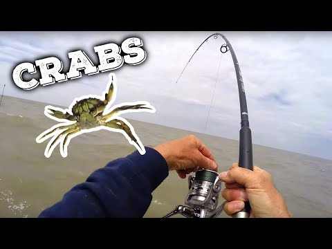 Epic Fishing With Crabs As Bait