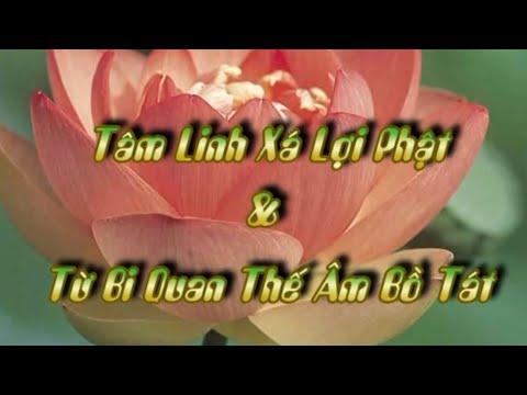 50+51 tâm linh xá lợi phật & đại bi quan thế âm bồ tát