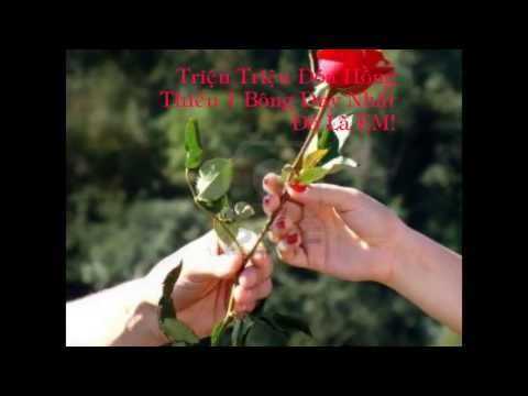 999 Roses Of Love - Tokyo Square || Lyrics [ Kara + Vietsub ]