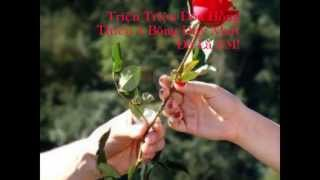 999 Roses Of Love - Tokyo Square    Lyrics [ Kara + Vietsub ]