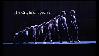 The Origin of Species – Ballet