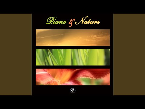Anne Marie - Wellbeing Music for Relax and Stress Relief