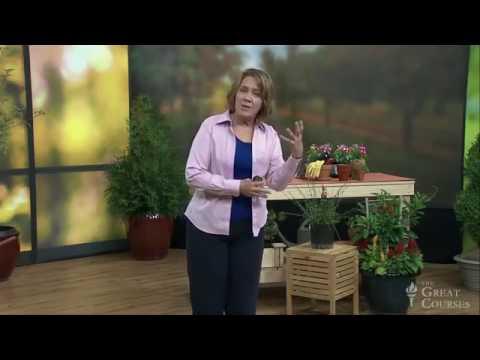 Trees & Shrubs Gardening Course