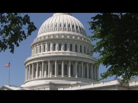 Political Funny: Name the three branches of government