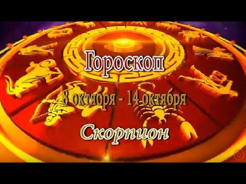 Скорпион. Гороскоп на неделю с 8 по 14 октября