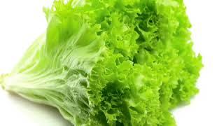 Lettuce [ˈletɪs] [ˈлэтис] - салат-латук