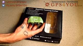 Электронный ошейник для охоты и дрессировки собак Ipets 618