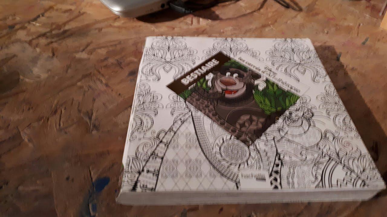 Présentation Bestiaire Disney carrés art thérapie livre coloriage Hachette
