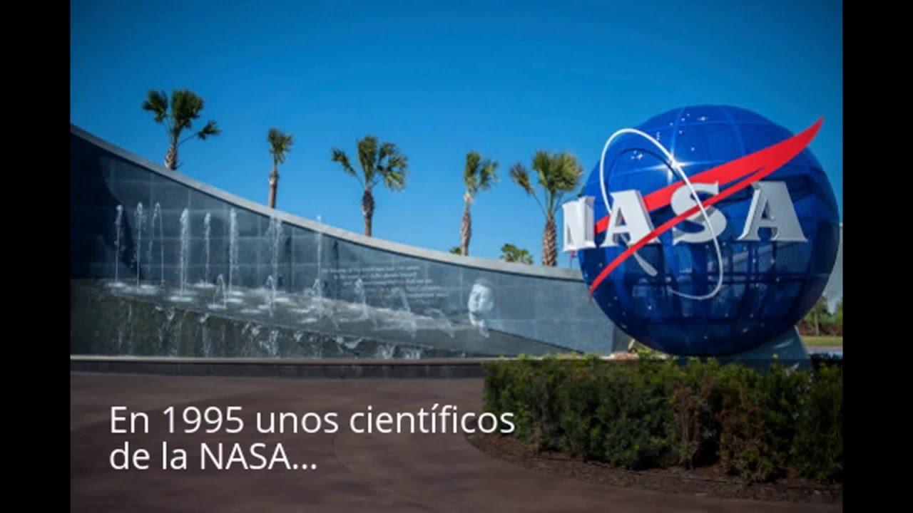 Efectos de las drogas sobre arañas, experimento de la NASA ...